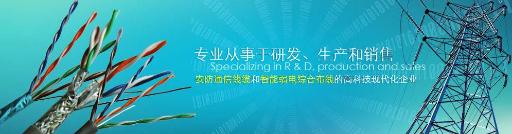 东莞市恩瑞实业有限公司专业制造音响线
